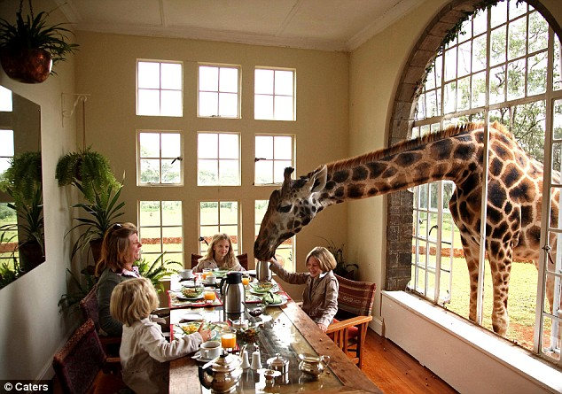 http://www.thesarayiahpost.com/MyPosts/Giraffe%20with%20Family.jpg